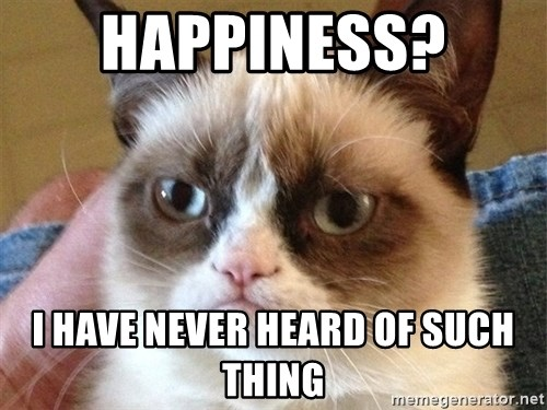 Angry Cat Meme - HAPPINESS?  I HAVE NEVER HEARD OF SUCH THING