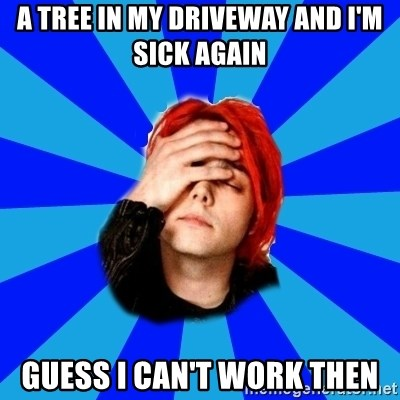 imforig - A TREE IN MY DRIVEWAY AND I'M SICK AGAIN GUESS I CAN'T WORK THEN