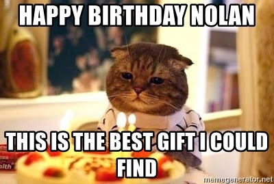 Birthday Cat - happy birthday Nolan  this is the best gift I could find