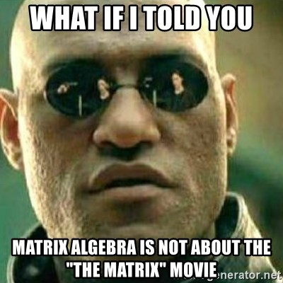 "What If I Told You - WHAT IF I TOLD YOU MATRIX ALGEBRA IS NOT ABOUT THE ""THE MATRIX"" MOVIE"