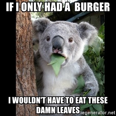 Koala can't believe it - if i only had a  burger i wouldn't have to eat these damn leaves