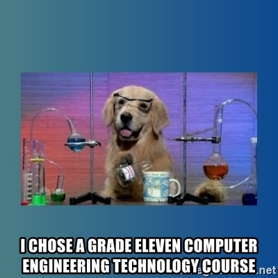Chemistry Dog -  I chose a grade eleven computer engineering technology course
