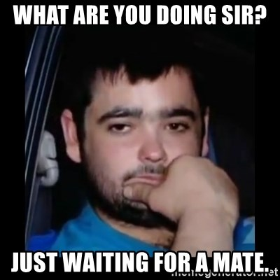 just waiting for a mate - WHAT ARE YOU DOING SIR? JUST WAITING FOR A MATE.