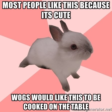 Roleplay Shipper Bunny - MOST PEOPLE LIKE THIS BECAUSE ITS CUTE WOGS WOULD LIKE THIS TO BE COOKED ON THE TABLE