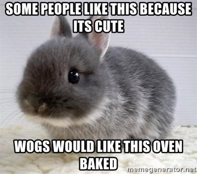 ADHD Bunny - SOME PEOPLE LIKE THIS BECAUSE ITS CUTE WOGS WOULD LIKE THIS OVEN BAKED