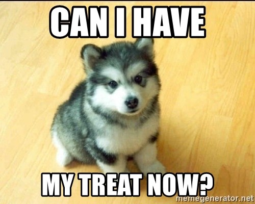 Baby Courage Wolf - CAN I HAVE MY TREAT NOW?