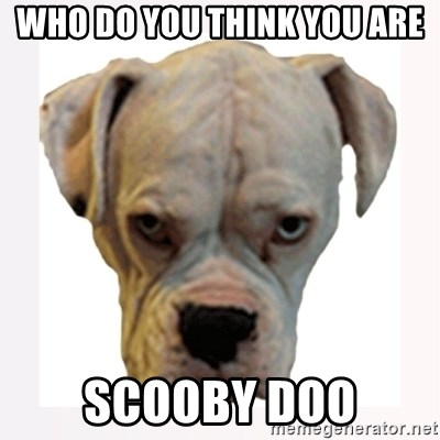 stahp guise - WHO DO YOU THINK YOU ARE SCOOBY DOO