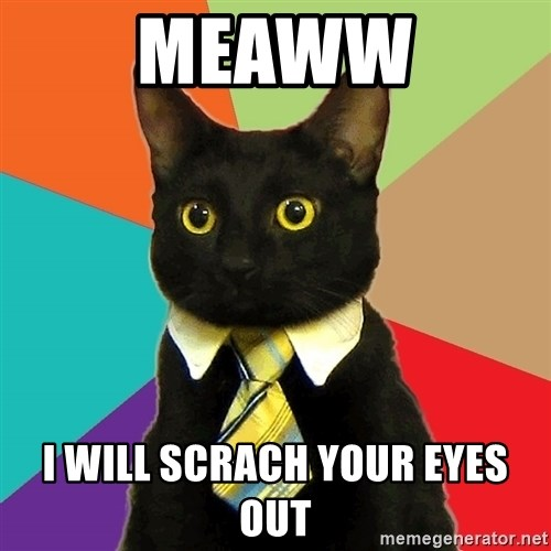 Business Cat - meaww i will scrach your eyes out