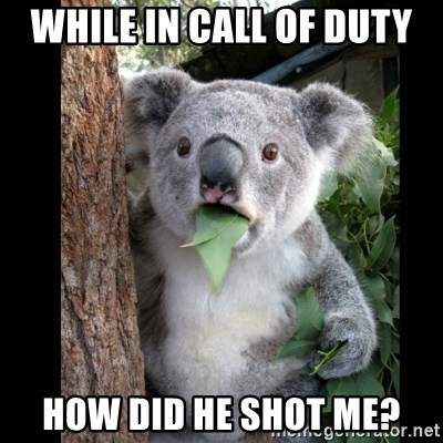 Koala can't believe it - While in Call of duty how did he shot me?
