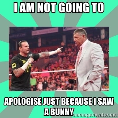 CM Punk Apologize! - I AM NOT GOING TO APOLOGISE JUST BECAUSE I SAW A BUNNY