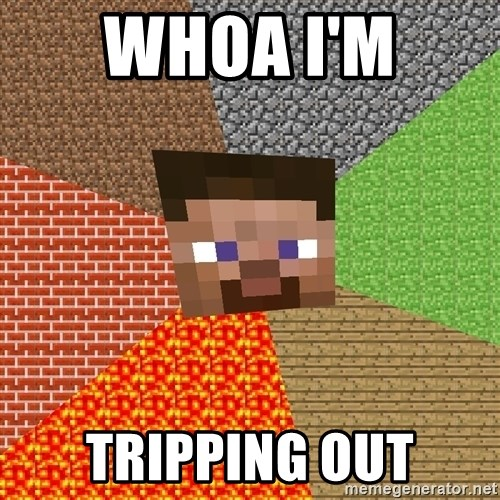 Minecraft Guy - WHOA I'M  TRIPPING OUT
