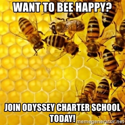 Honeybees - Want to Bee Happy? Join Odyssey Charter School Today!