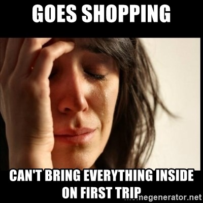 First World Problems - GOES SHOPPING CAN'T BRING EVERYTHING INSIDE ON FIRST TRIP