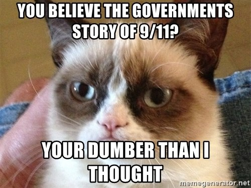 Angry Cat Meme - You believe the Governments Story of 9/11? Your dumber than i thought