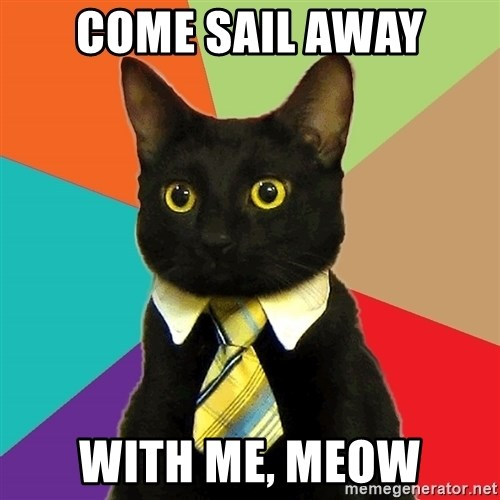 Business Cat - come sail away with me, meow