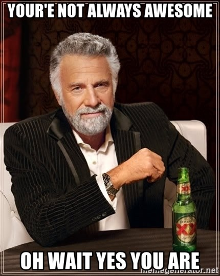 The Most Interesting Man In The World - Your'e not always awesome Oh wait yes you are