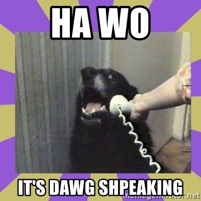 Yes, this is dog! - HA WO IT'S DAWG SHPEAKING