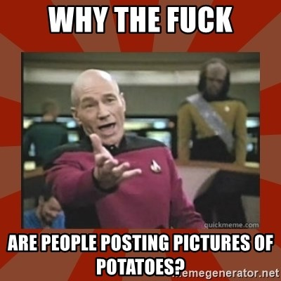 Annoyed Picard - why the fuck are people posting pictures of potatoes?