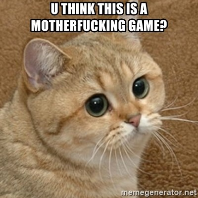 motherfucking game cat - U think thIs is a motherfucking game?