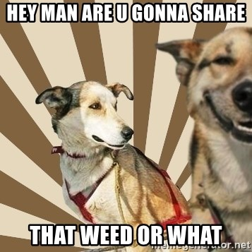Stoner dogs concerned friend - HEY MAN ARE U GONNA SHARE THAT WEED OR WHAT