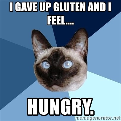 Chronic Illness Cat - I gave up gluten and I feel.... hungry.