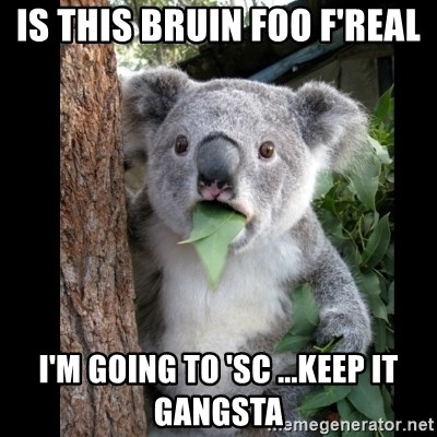 Koala can't believe it - IS THIS Bruin FOO F'REAL I'm going to 'SC ...keep it gangsta