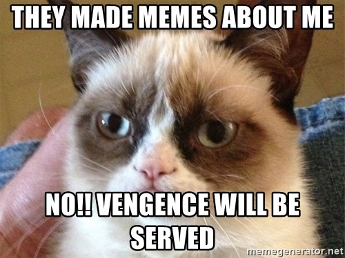 Angry Cat Meme - they made memes about me no!! vengence will be served