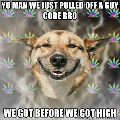 Stoner Dog - YO MAN WE JUST PULLED OFF A GUY CODE BRO WE GOT BEFORE WE GOT HIGH