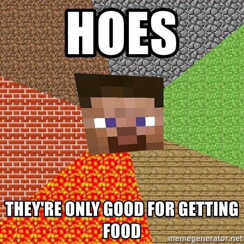 Minecraft Guy - Hoes They're only good for getting food