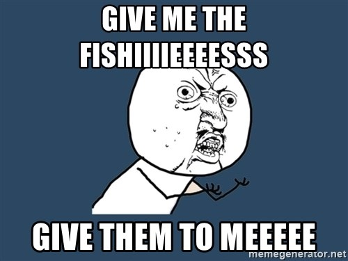 Y U No - give me the fishiiiieeeesss give them to meeeee