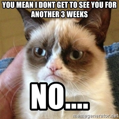 Grumpy Cat  - You mean I dont get to see you for another 3 weeks no....