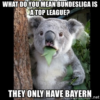 Koala can't believe it - what do you mean bundesliga is a top league? they only have bayern