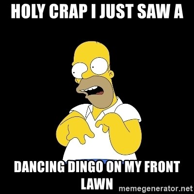 look-marge - holy crap i just saw a  dancing dingo on my front lawn