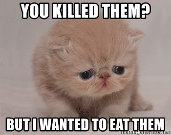 Super Sad Cat - you killed them? BUT I WANTED TO EAT THEM