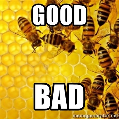 Honeybees - GOOD BAD
