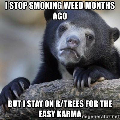 Confession Bear - I stop smoking Weed months ago But i stay on r/trees for the easy karma