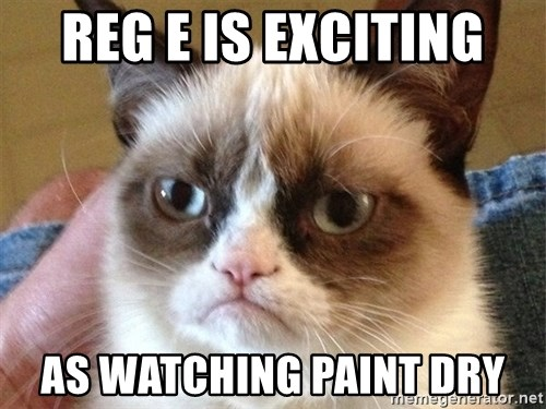 Angry Cat Meme - Reg e is exciting As Watching paint dry