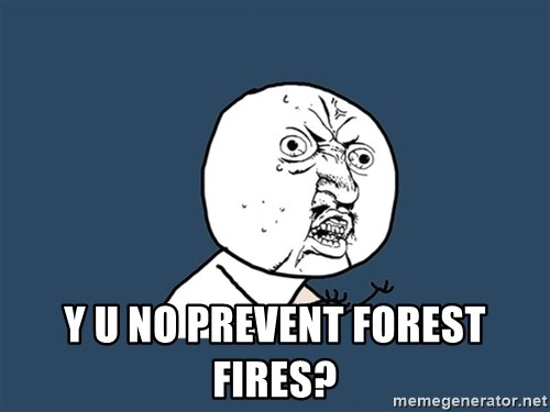 Y U No -  Y U No Prevent forest fires?