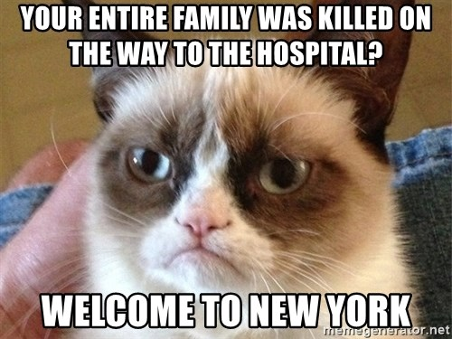 Angry Cat Meme - your entire Family was killed on the way to the hospital? welcome to New york