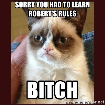 Tard the Grumpy Cat - Sorry you had to learn robert's rUles Bitch