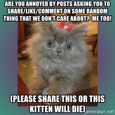 cute cat - Are you Annoyed by posts asking you to share/like/comment on some random thing that we don't care about?  Me too! (Please share this or this kitten will die)
