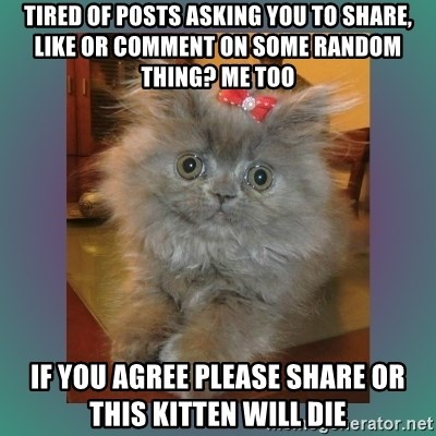 cute cat - Tired of posts asking you to SHare, like or comment on some random thing? Me too If you agree please share or this kitten will die