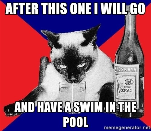 Alco-cat - AFTER THIS ONE I WILL GO AND HAVE A SWIM IN THE POOL