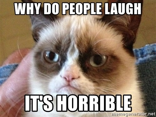 Angry Cat Meme - WHY DO PEOPLE LAUGH IT'S HORRIBLE