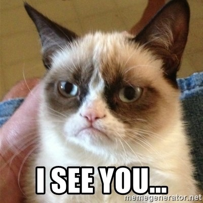 Grumpy Cat  -  I see you...