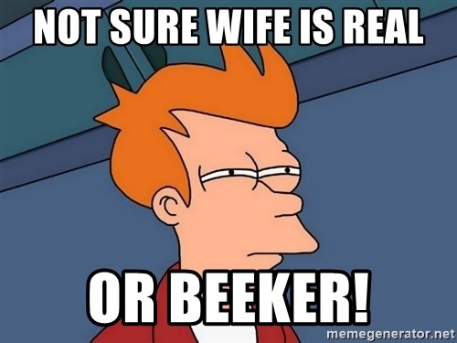 Futurama Fry - Not sure wife is real or beeker!