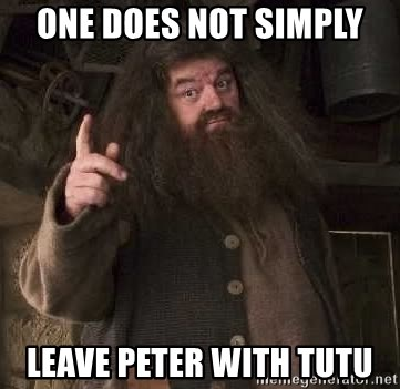 Hagrid - one does not simply leave peter with tutu