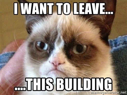 Angry Cat Meme - I want to leave... ....This building