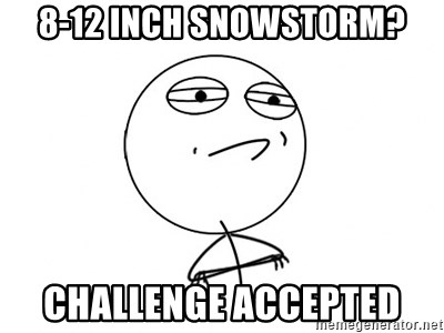 Challenge Accepted - 8-12 inch snowstorm? challenge accepted