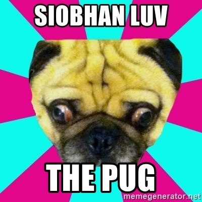 Perplexed Pug - SIOBHAN LUV  THE PUG
